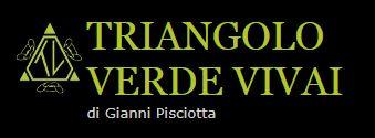 Questa immagine ha l'attributo alt vuoto; il nome del file è Logo-TRINAGOLO-VERDE-VIVAI-2.jpg